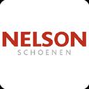Nelson logo icon