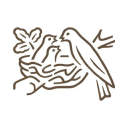 nestle.in logo icon