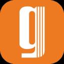 Netgem logo icon