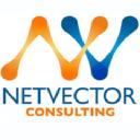 NetVector Consulting on Elioplus