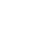 New Star Realty Company Logo