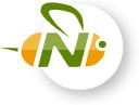 Info nextbee logo
