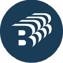 Ng Bailey logo icon