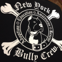 Read New York Bully Crew Reviews
