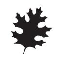 Oak Ridge CC logo