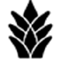Ohana Real Estate Investors logo icon