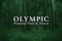 Olympic National Parks logo icon