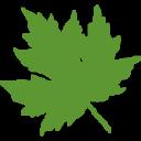One Cu logo icon