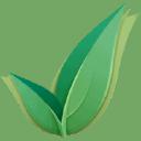 Open Apply logo icon