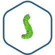 Openldap logo icon