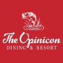 Opinicon logo icon