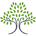 Optimal Life Wellness logo icon