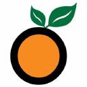 Orange Naturals logo icon