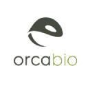 Orca Bio Stock