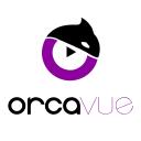 Orca Vue logo icon
