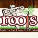 Organic Roots logo icon