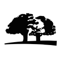 Origins logo icon