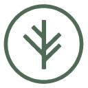 Branch Insurance Stock