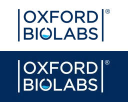 Oxford Biolabs® logo icon