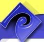 Pacific Auction Companies logo