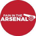 paininthearsenal.com logo icon