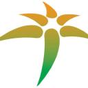 Palm Tree Tech Center logo