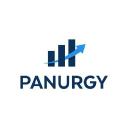 Panurgy - IT Support Company Logo