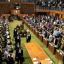 Parliament Now Logo