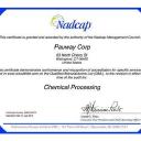 Pauway Corporation logo