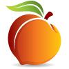 Peachtreedata logo