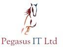 Pegasus IT on Elioplus