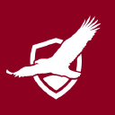 Pekin Insurance logo icon