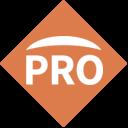 Perry Pro Tech logo icon