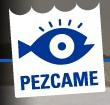 Pezcame logo icon