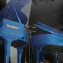 Piano Trends Music Company logo