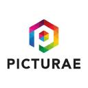 Picturae® logo icon