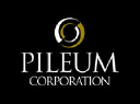 Pileum Corporation on Elioplus