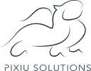 Pixiu Solutions