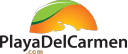Playa Del Carmen logo icon