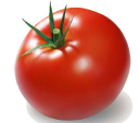 eSignatures for Pomodoro Time by GetAccept