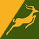 Precision Air logo icon