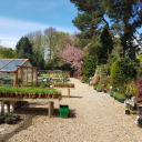 Read Primrose Cottage Nursery, Cheshire East Reviews