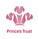The Prince's Trust - Send cold emails to The Prince's Trust
