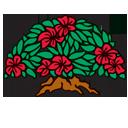 Princeville logo