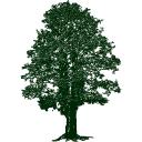 PROSPECT AGENCY LLC logo
