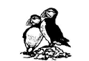 Puffins of Exeter Ltd logo
