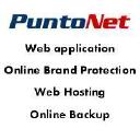 Puntonet Servizi SRL logo