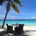 Purely Maldives Ltd logo