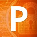 PWI Inc logo