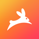 Rabbit logo icon